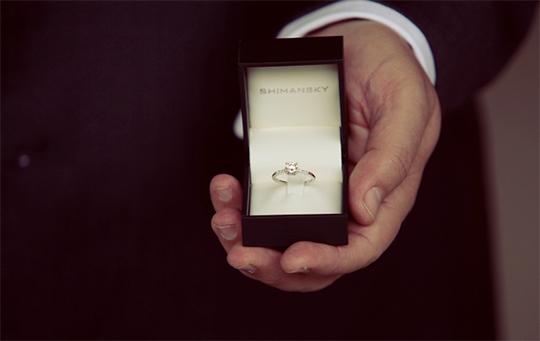 Shimansky Proposal Tips