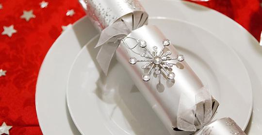 Shimansky Christmas Proposal