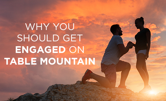 Why you should get engaged on Table Mountain | Shimansky