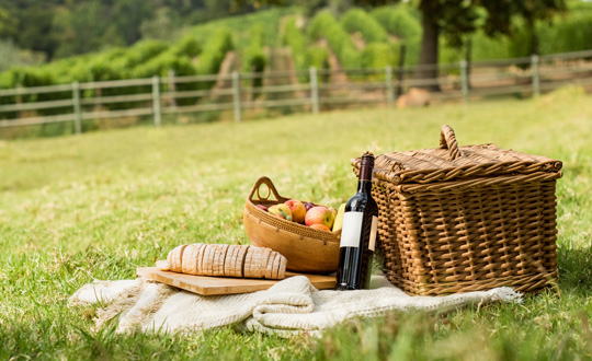 Enjoy a Mother's Day Picnic