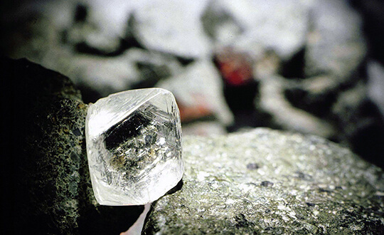 Shimansky hand-selected diamonds