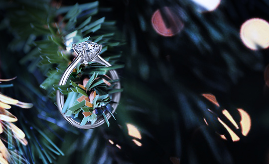 Shimansky Christmas Proposals